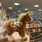 Barnes & Noble Bookfair Benefits ROCK