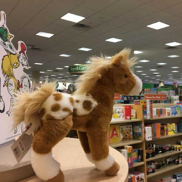 Barnes & Noble Bookfair Benefits ROCK