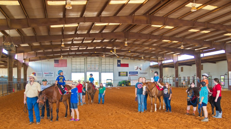 Equine-assisted Therapy Programs for Children and Adults | ROCK